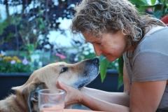 Tierarzt Praxishund-Joy