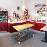 Operationsbereich Tierarztpraxis